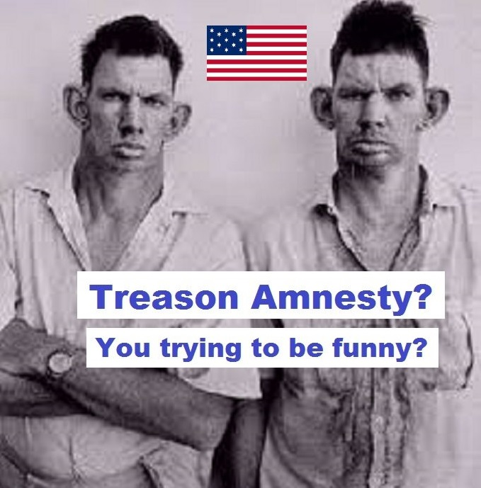 Inbred hillbilly treason amnesty trying to be funny AMERICAN FLAG