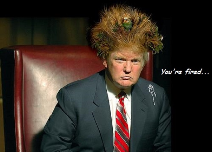 Trump ~ Bad hair day ~ You're fired 680