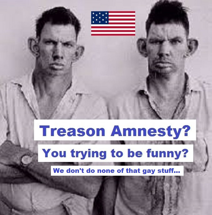 Inbred hillbilly treason amnesty trying to be funny AMERICAN FLAG GAY STUFF