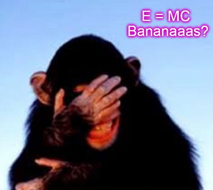 Monkey E = MC Bananas