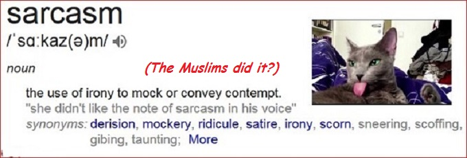 Sarcasm Cat the Muslims did it