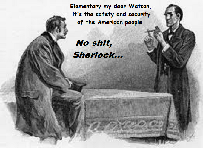Sherlock and Dr Watson ~ SAFETY AND SECURITY ~ NO SHIT SHERLOCK