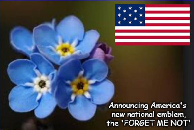 THE FORGET ME NOT FLAG