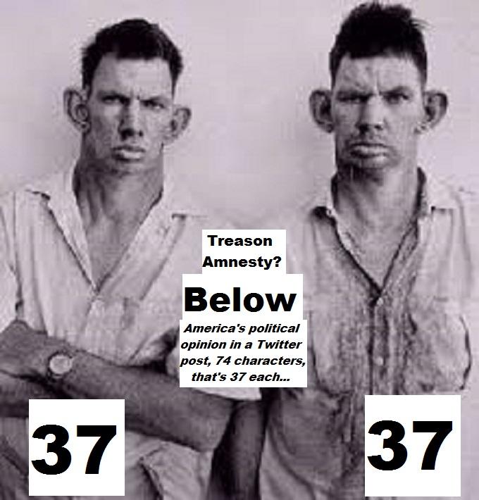 inbred-hillbilly-treason-amnesty-74-chars-37-each
