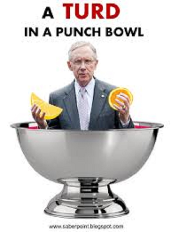 turd-in-the-punchbowl