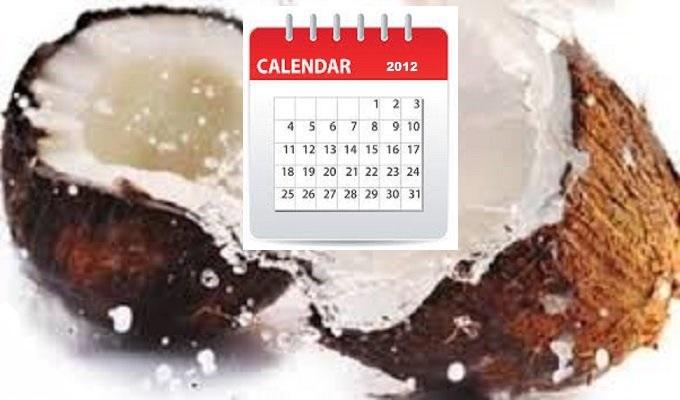 coconuts-calendar-2012