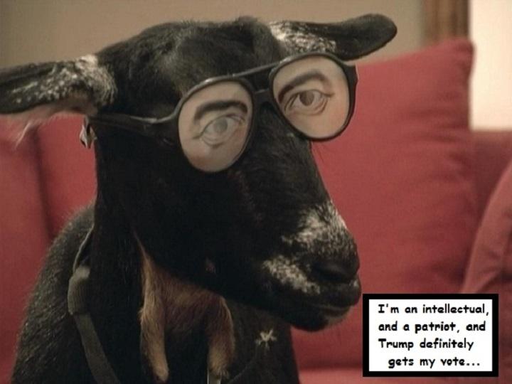 cool-goat-trump-vote