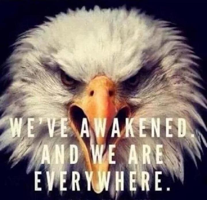 eagle-awakened