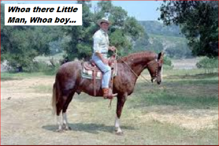 reagans-horse-whoa-little-man