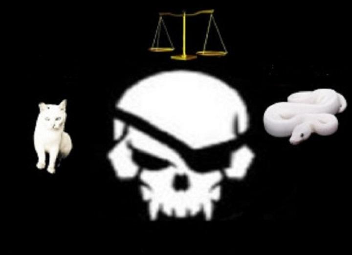 skull-cat-snake