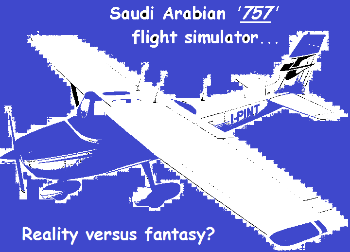 cessna-saudi-arabian-flight-simulator-purple-blue