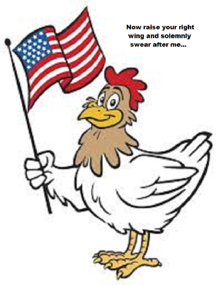 chicken-usa-raise-your-right-wing