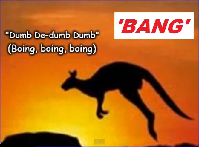 kangaroo-boing-dumb-bang