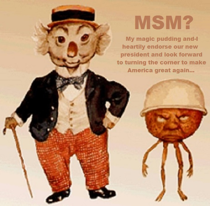 magic-pudding-msm-media-new-president