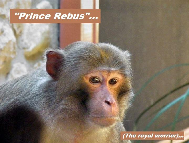 rebus-monkey-prince-rebus