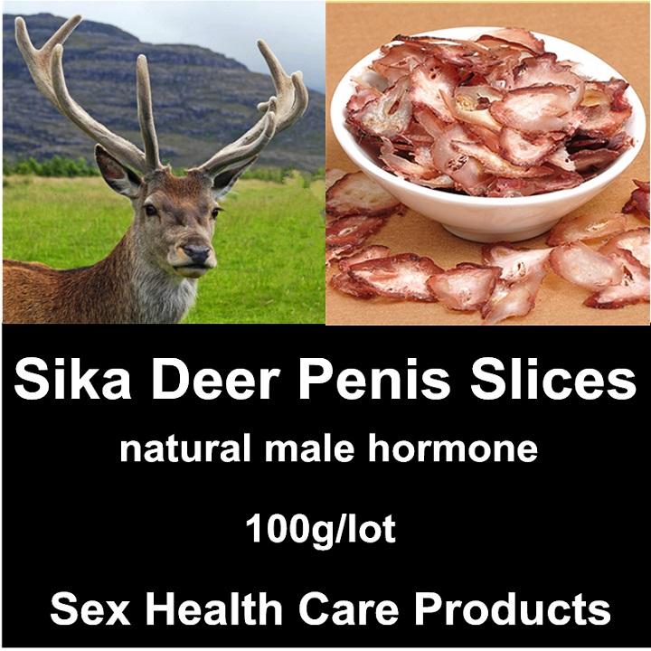 sika-deer-penis