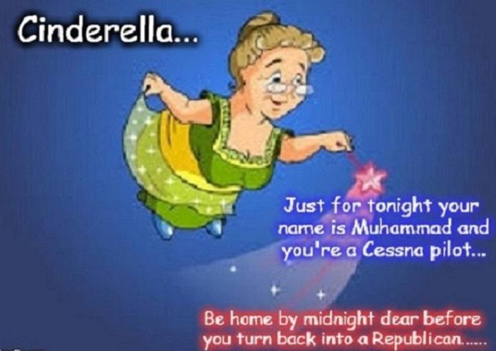fairy-cessna