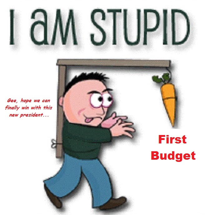 i-am-stupid-carrot-first-budget