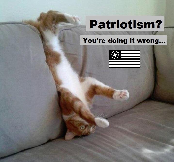patriotism-youre-doing-it-wrong-nazi-cat