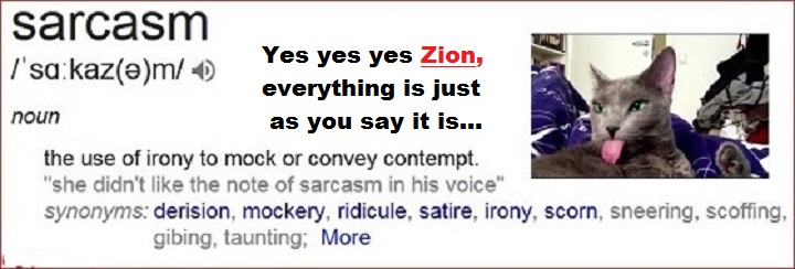 sarcasm-cat-yes-yes-yes-zion-720