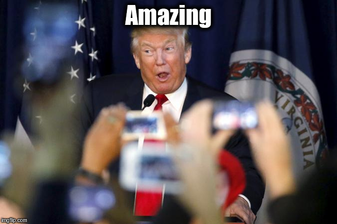 trump-amazing-one