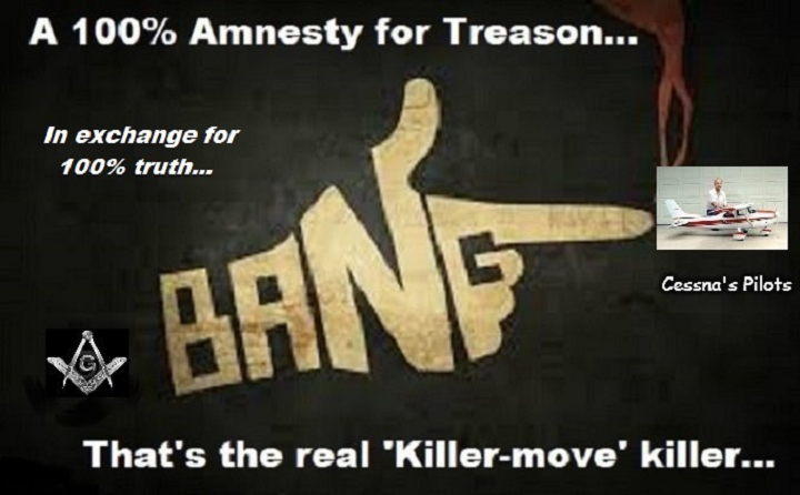 treason-amnesty-finger-bang-cessna