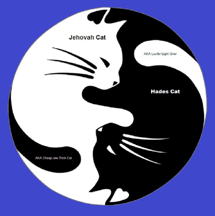 yin-yang-cheap-jew-trick-cat