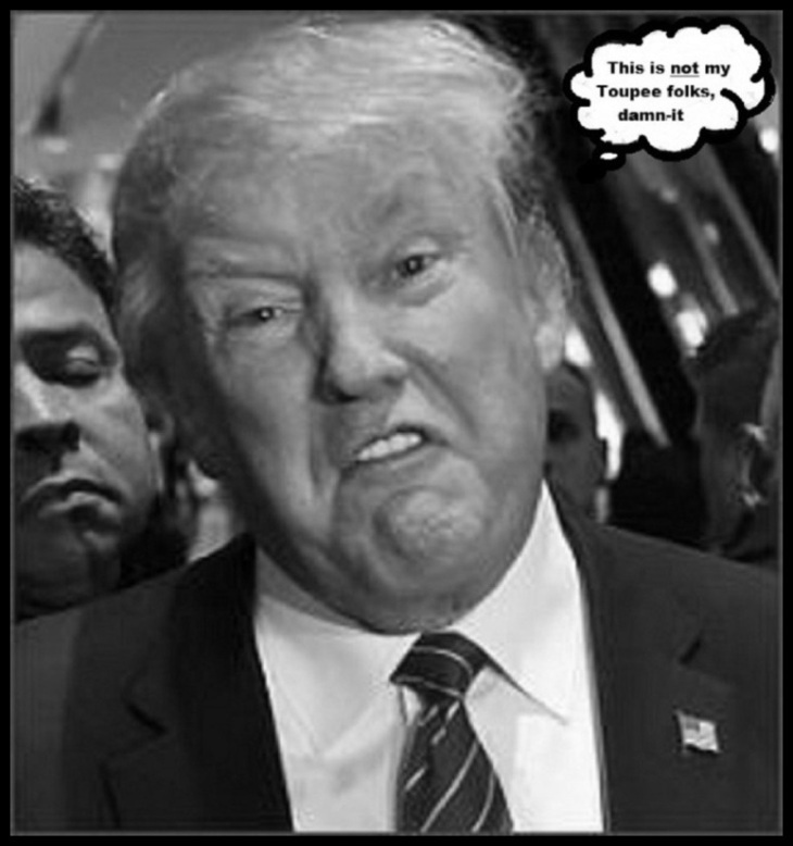 FAKE Toupee Trump LARGE Border BW