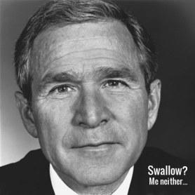 009 Bush swallow