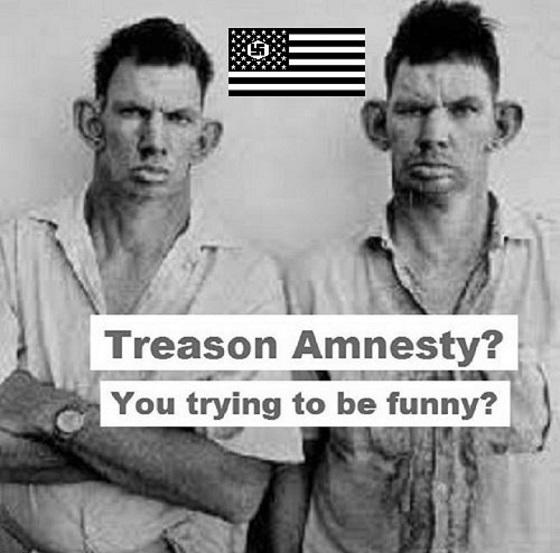 American Nazi treason amnesty 560