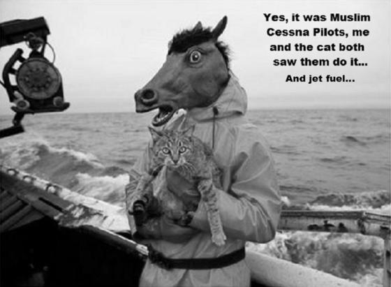 horse-cat-cessna pilot's BW 560