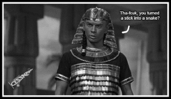 aaa-pharaoh-cessna-stick-snake-bw-600