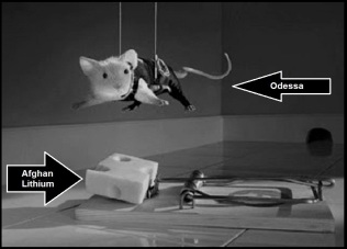 Mission Impossible rat ~ Afghan Lithium (3)
